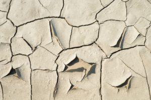 浜松 たいかん鍼灸治療院 乾燥肌画像